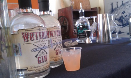 Waterloo Gin cocktail from Twin Liquors